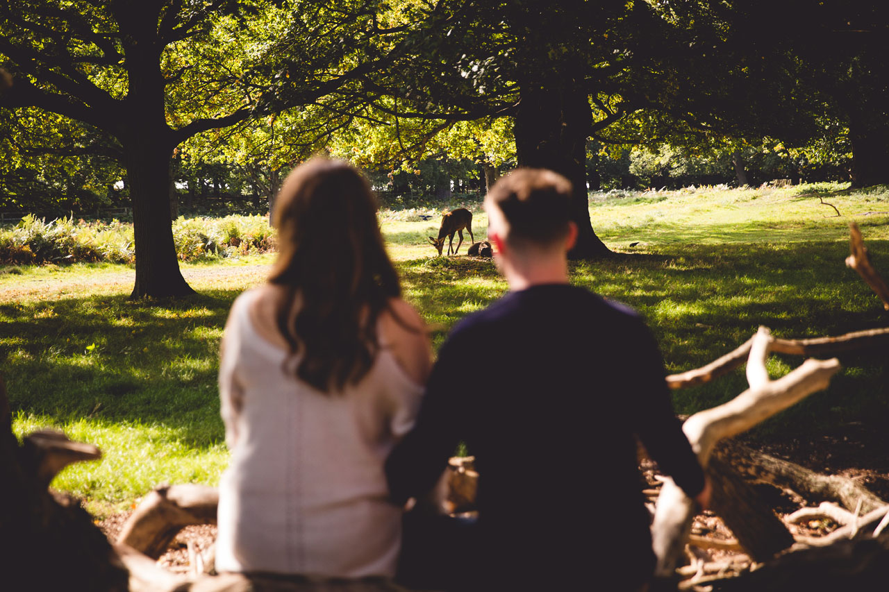 Watching the deer. Liz and Luke's engagement shoot in Richmond Park by Veiled Productions. Pembroke Lodge Wedding.